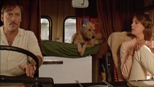 Stacy Keach, Jamie Lee Curtis, and a possible dingo in Road Games