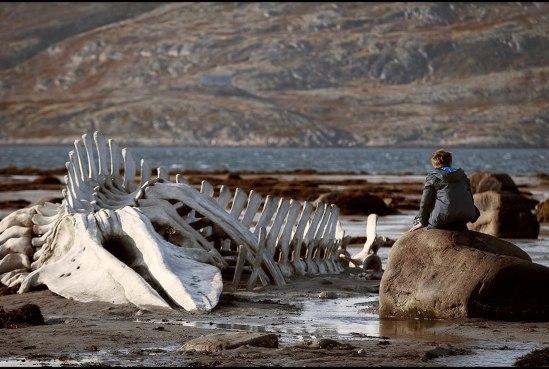 Leviathan Whale